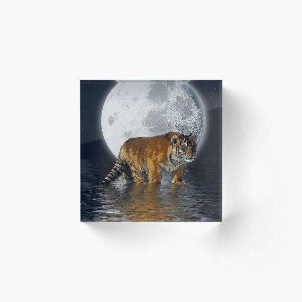 Tiger Cub and Full Moon Acrylic Block