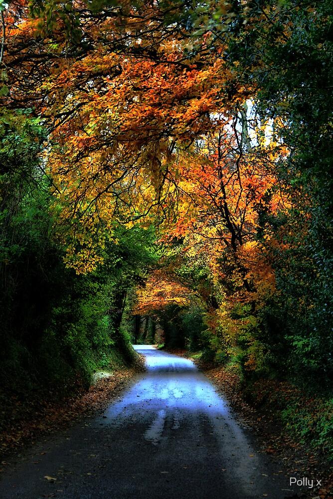 Through the Autumn by Polly x