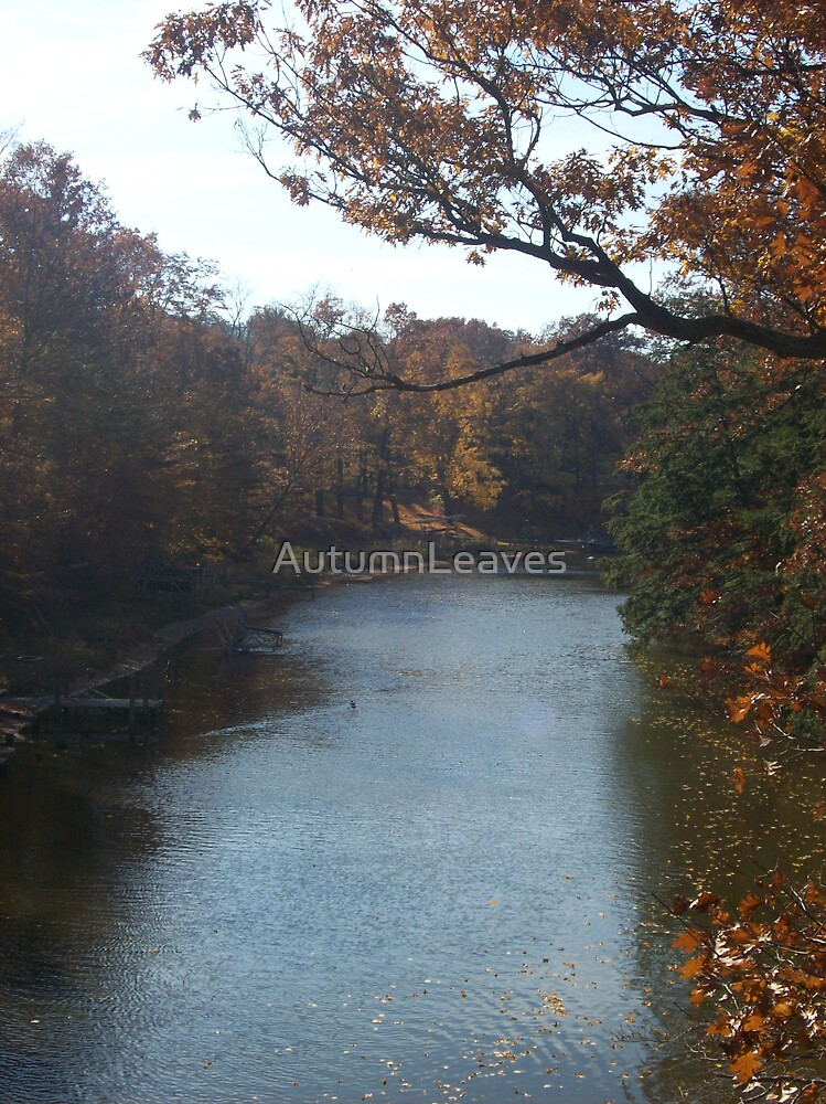 Mona Lake Channel by AutumnLeaves