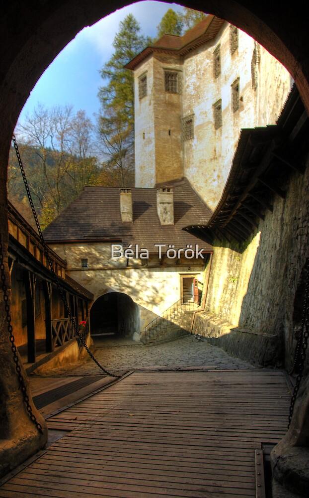 Castle Gate by Béla Török