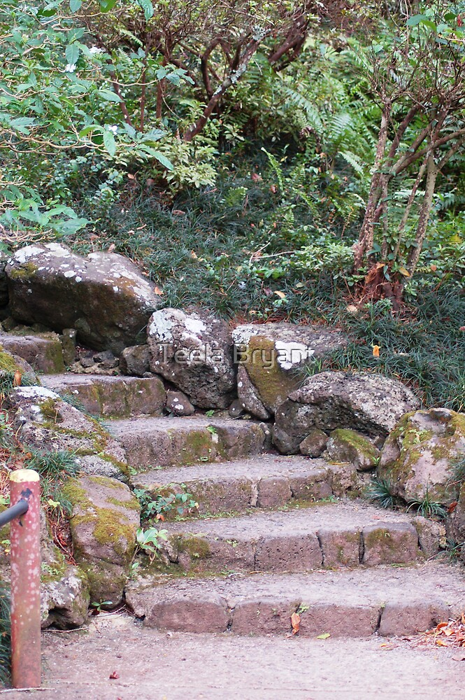 Stairs by Teela Bryant