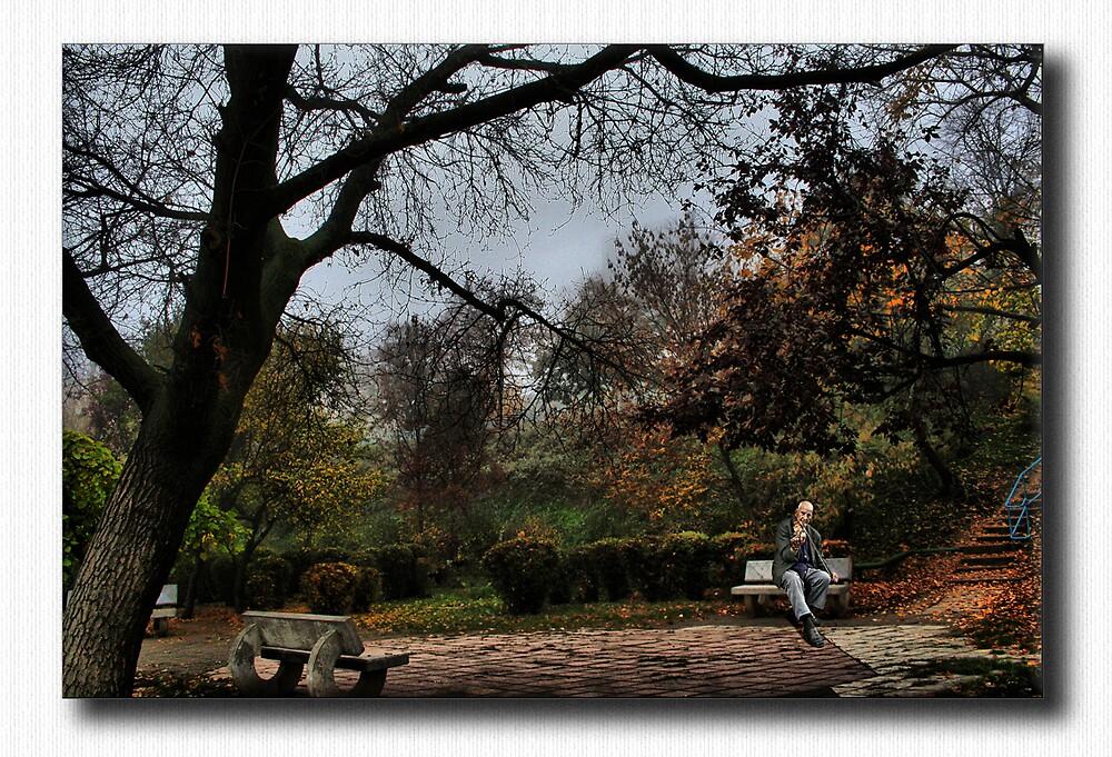 autumn garden by gingarasu