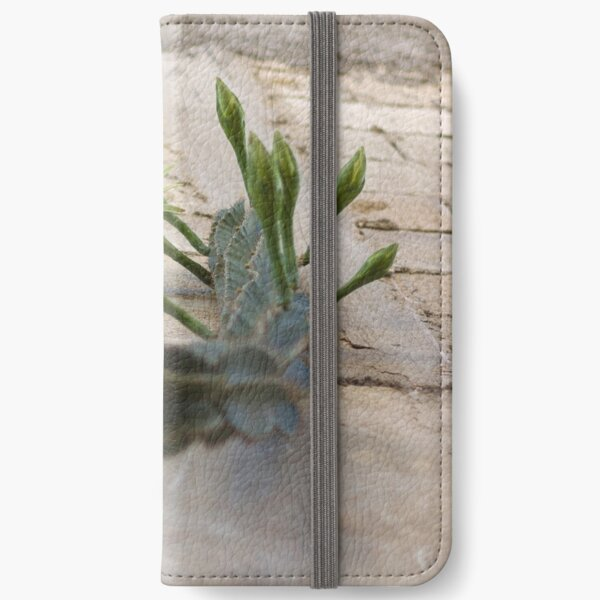Princess of the Night - Blooming against Urban Wall iPhone Wallet