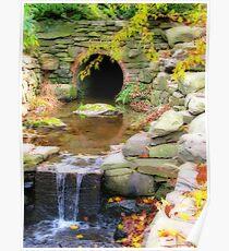 Fall at the Arboretum Poster