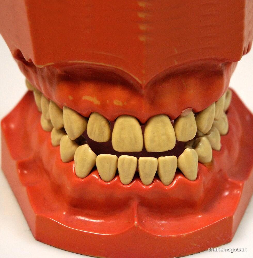 Anyone See My Teeth............... by shanemcgowan