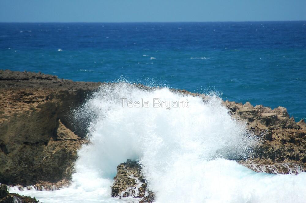 Water splash by Teela Bryant