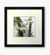 Princess of the Night - Blooming in Abundance Framed Print