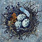 Blue Nest by Rachelle Dyer