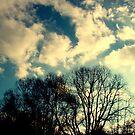 Sky by Alojzy