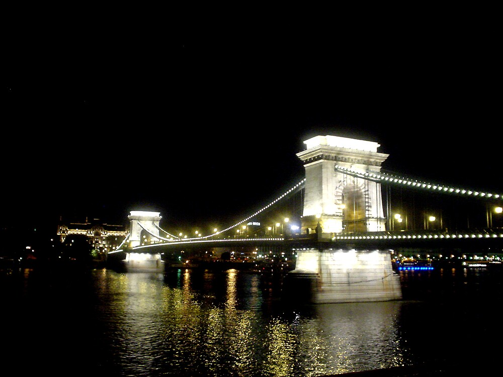 Bridge at night by viba