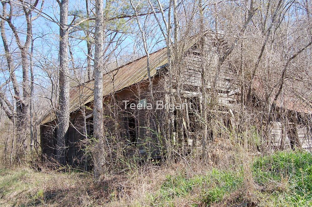 House 2 by Teela Bryant