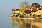 Houses along Geneva lake by Patrick Morand