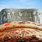 Down the Barrel of a Gun by JaneTara Oliver