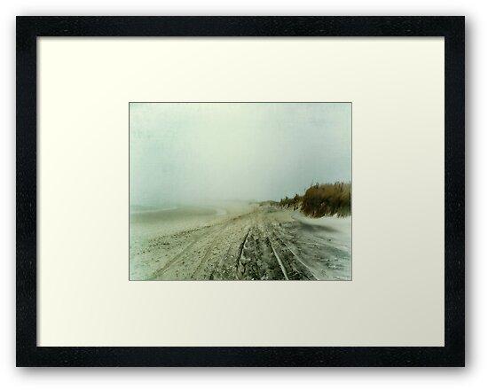 Sea Watch by Mary Ann Reilly