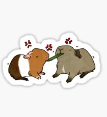 Guinea Pigs Fighting Over Grass Sticker