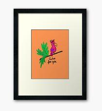 Funny Parrot In love Framed Print