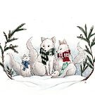Winter Foxes by shellysea