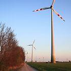 Field of windmills by zumi