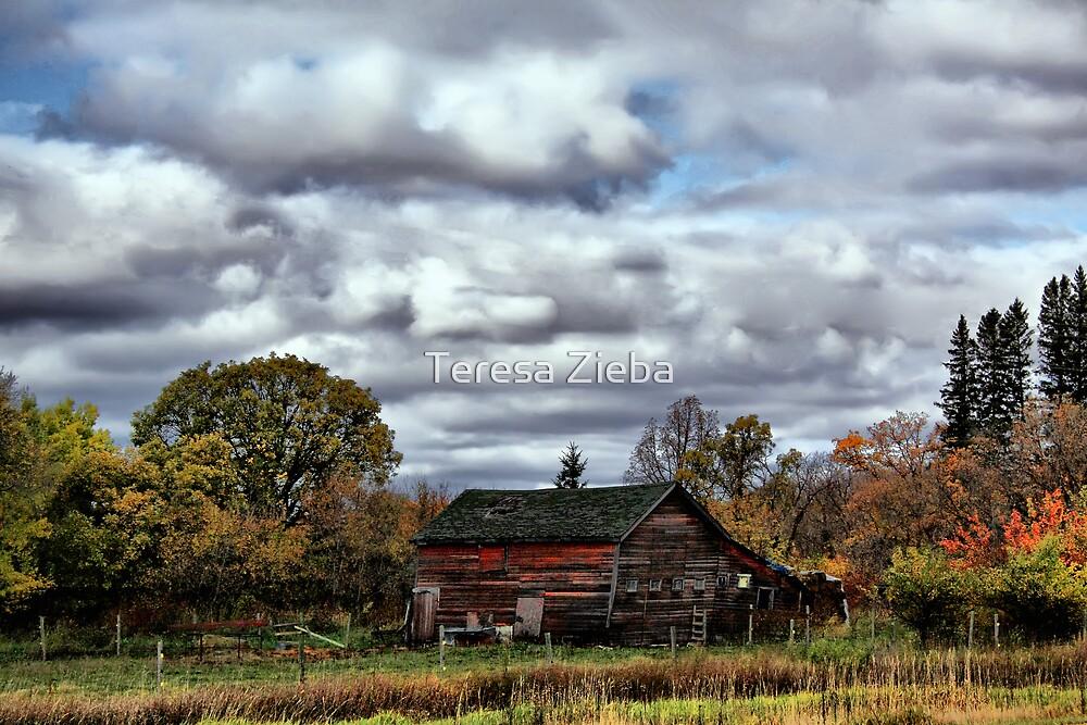 Home, Sweet Home by Teresa Zieba