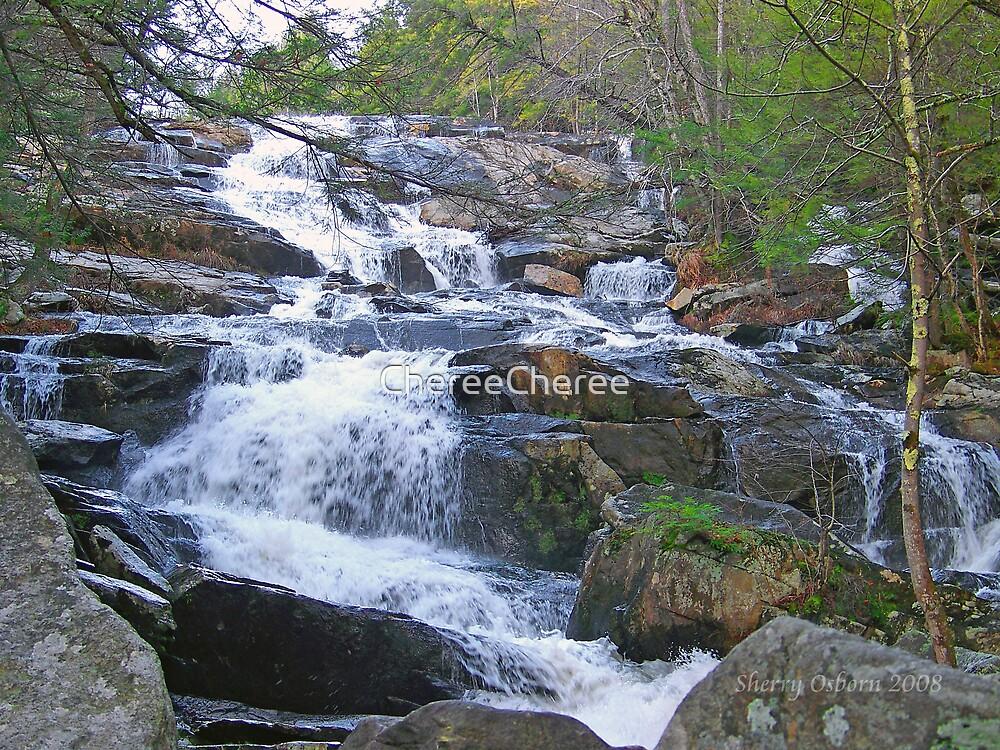 Glens Falls 5 by ChereeCheree