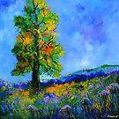 an oak in summer by calimero