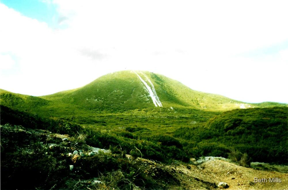Mount Lyall on the West Coast of Tasmania by Beth Mills