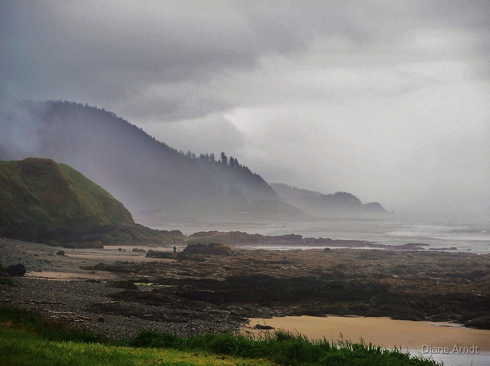 Foggy Morning....Outside Yachats, Oregon by Diane Arndt