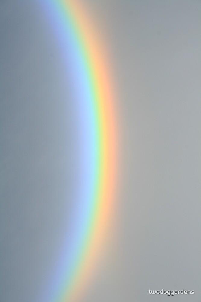 Spectrum by twodoggardens