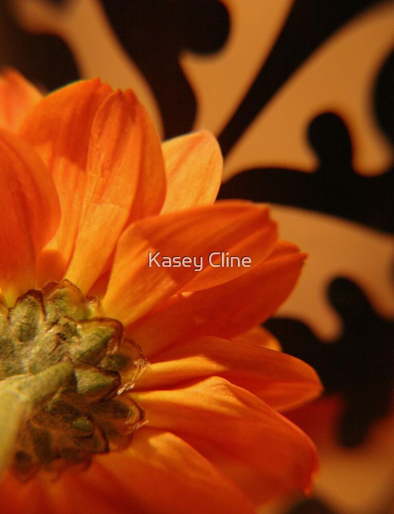 Backside by Kasey Cline