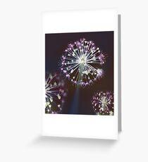 Floral Fireworks. Dark Floral Greeting Card