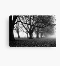 Foggy Path II (BW) Canvas Print