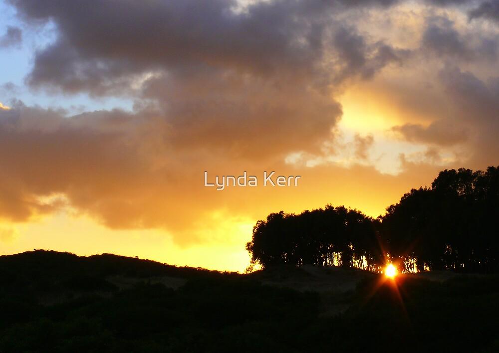 Sunrise Surprise by Lynda Kerr
