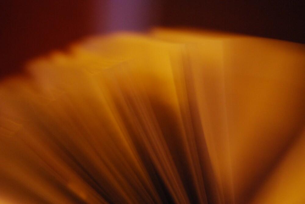 empty pages. by alyssa naccarella