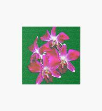 Artistic Orchid Art Board