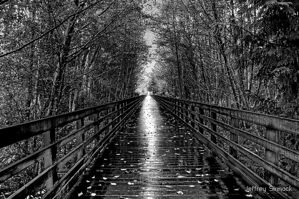Light at the end by Jeffrey  Sinnock