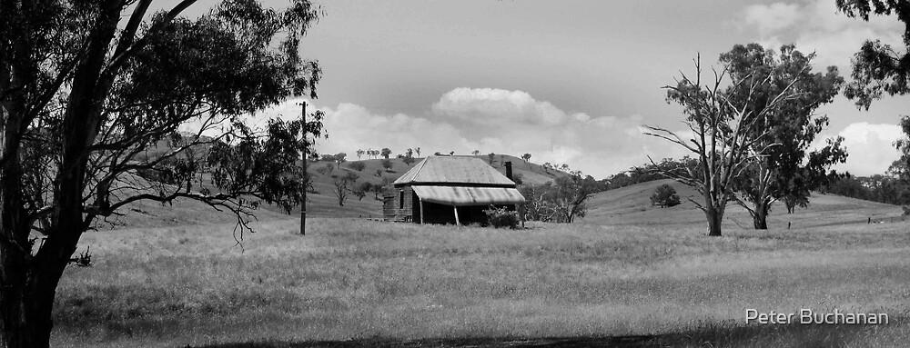 Farm House by Peter Buchanan