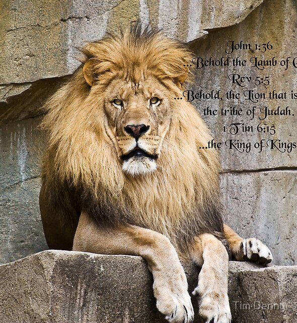 ~ The Lamb, The Lion, that has been crowned, The King ~ by Tim Denny