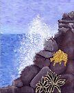 Ocean Joy by Karirose
