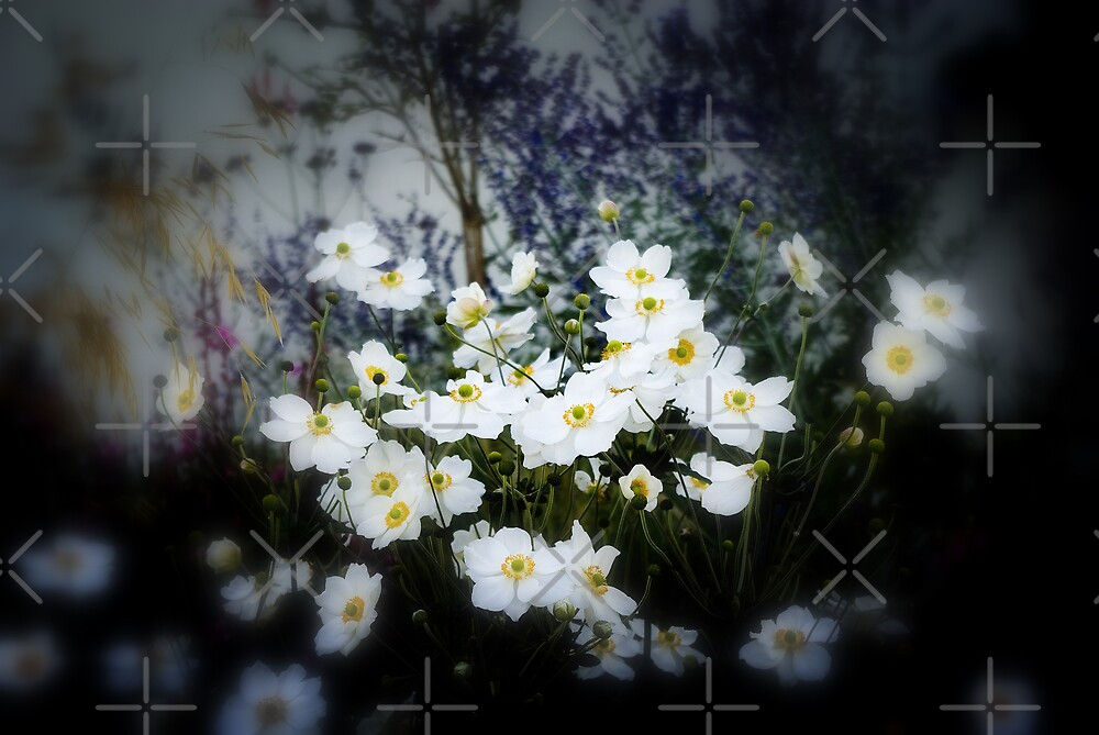 Flowers in the Mist by Catherine Hamilton-Veal  ©