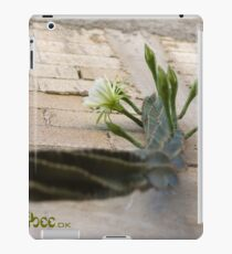 Princess of the Night - Blooming against Urban Wall iPad Case/Skin