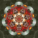 Enlighten Mandala by Kelly Dietrich