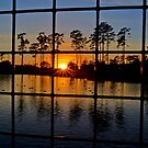 Sunset through the Fence  by TJ Baccari Photography