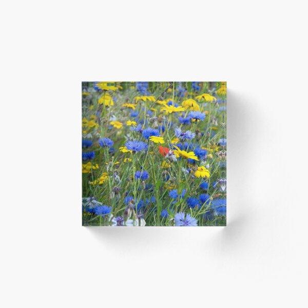 Blue Cornflowers and Yellow Daisies Acrylic Block