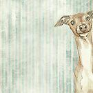 «Perro curioso» de Val Garcia Duran