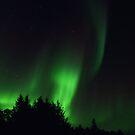 The Northern Lights 04 von nurmut