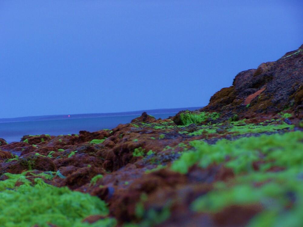 Striking Green by Daniel Rayfield