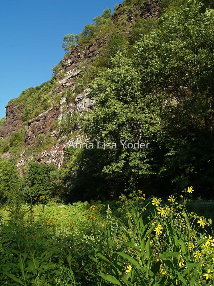 The Nockamixon Cliffs, Bucks County PA by Anna Lisa Yoder