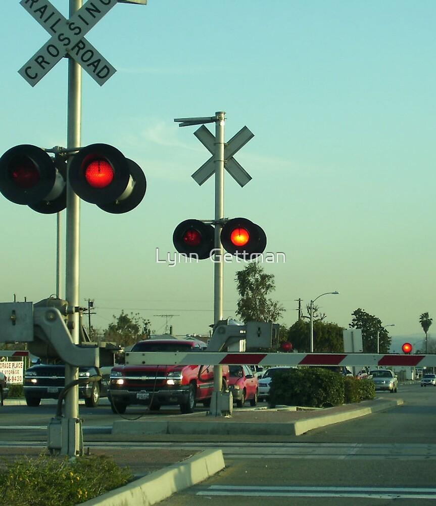 Stop! by Lynn  Gettman