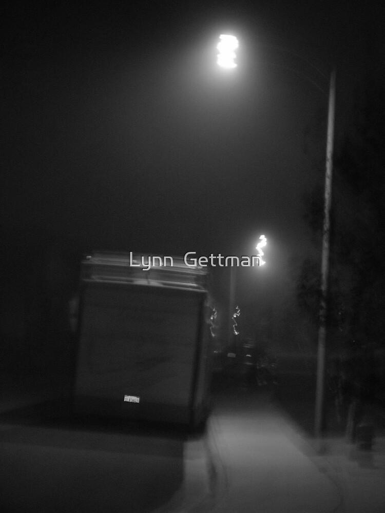 Trailer Noire by Lynn  Gettman