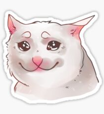 Crying cat Sticker